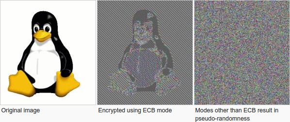 alt ecb_penguin
